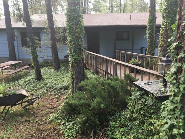 Spacious Cabin on 5 Treed Acres - Lakeside  - Casa