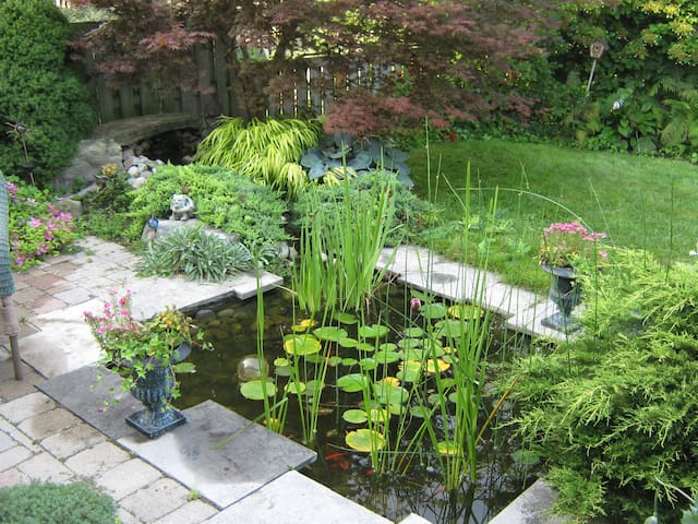 Back yard pond in summer with seating and hammock.
