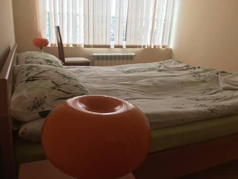 """Small, clean and cosy flat """"Damyanitsa"""""""