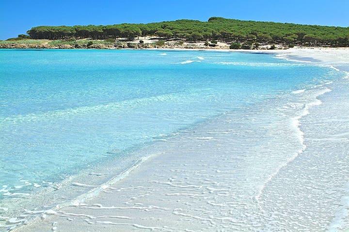 Holidays in Sardinia-Vacanze in Sardegna - San Lorenzo