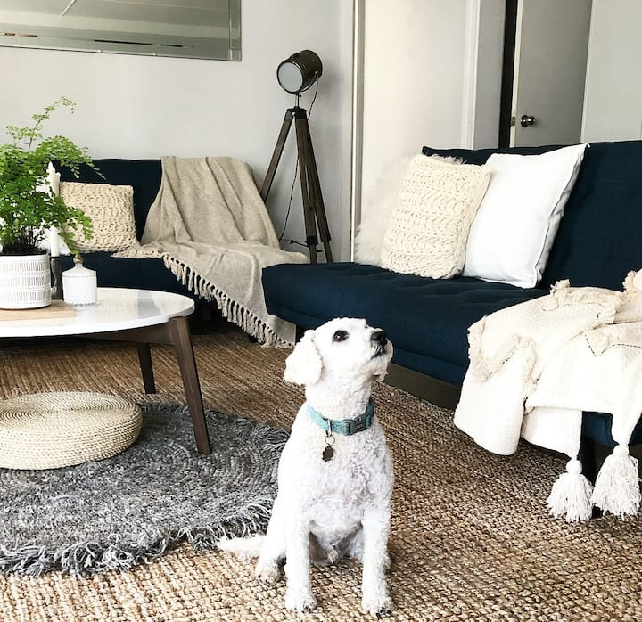 Enjoy Nature at Pet Friendly 2BR Home - Ocean View