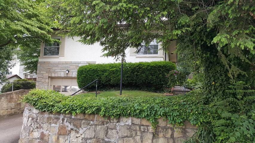 Mid-Century Dream Cottage in Historic Neighborhood
