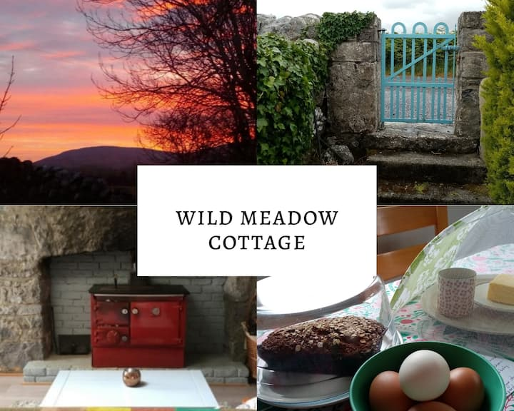 Wild Meadow Cottage. 200yrs old Ballyvaughan