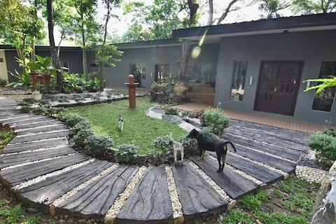 Bamboo, Gecko and Mango (BGM)