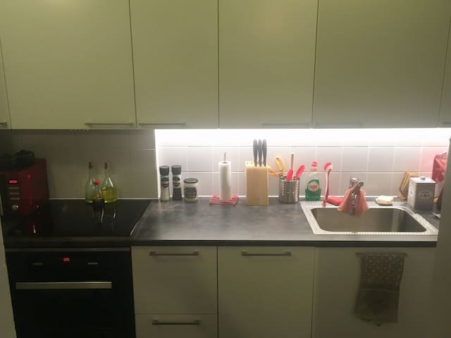 Cozy apartment 37m2, 2rooms, kitchen, wc/shower