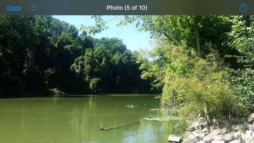 HURON RIVER RETREAT, HUNT, BOAT, GR8 LOCATION!