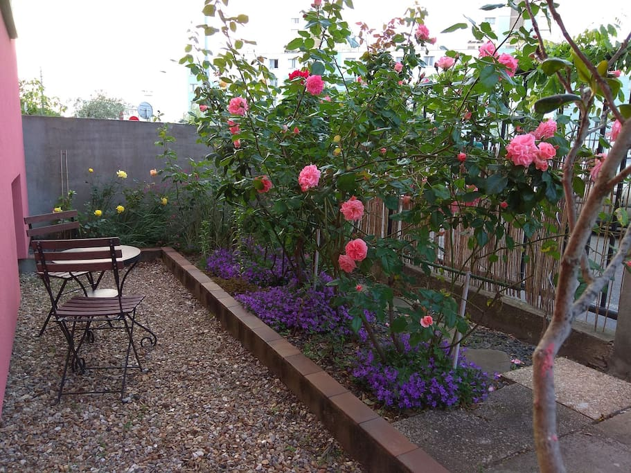 Un jardinet fleuri