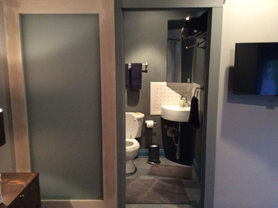 Full size bath with barn door for privacy
