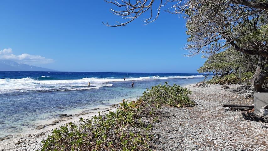 MOOREA SURF