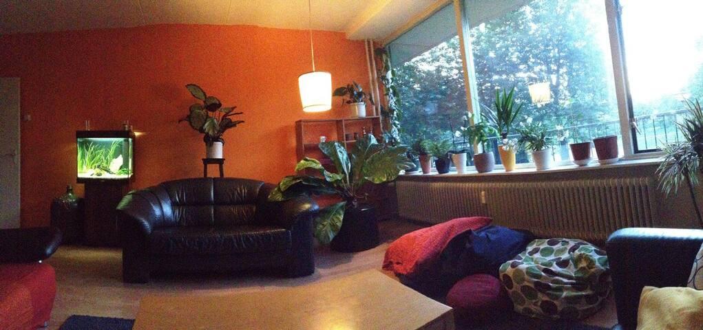 Room in Wageningen