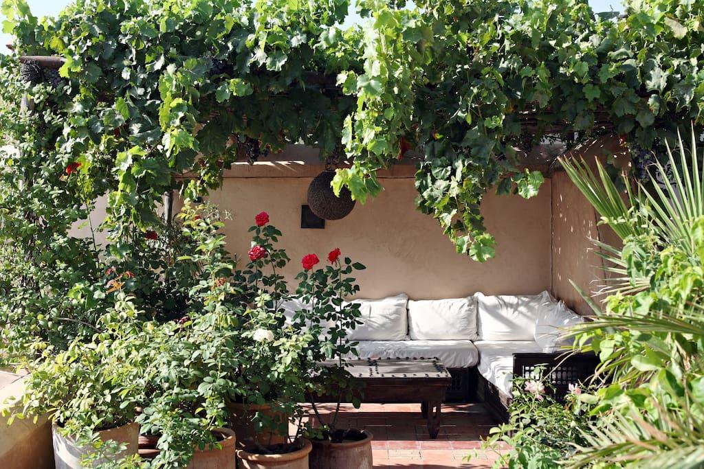 Terrasse de Dar Rbaa Laroub