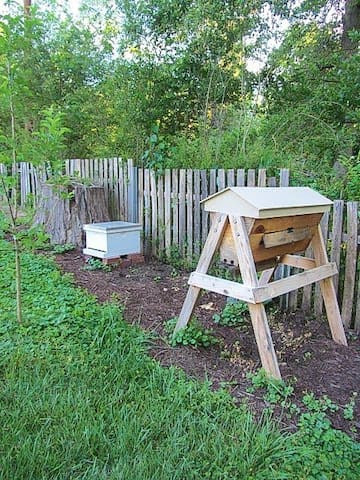 Two of our beehives