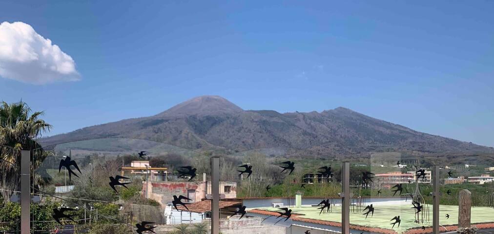 Unique panorama of Vesuvius