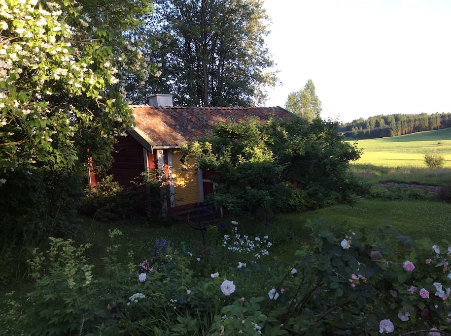 Your cottage Ticktorp in July