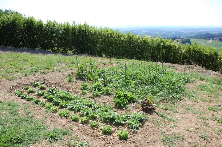Guests are welcome to take produce from the vegetable garden