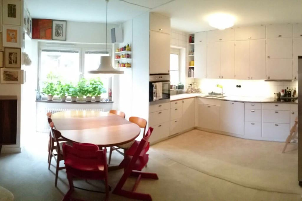 Dinner table in livingroom with open kitchen