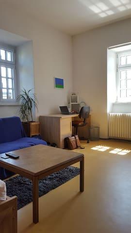 Schönes Zimmer in Bodenseenähe! - Konstanz - Appartement