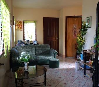 Discover Southern Palawan - Sofronio Española