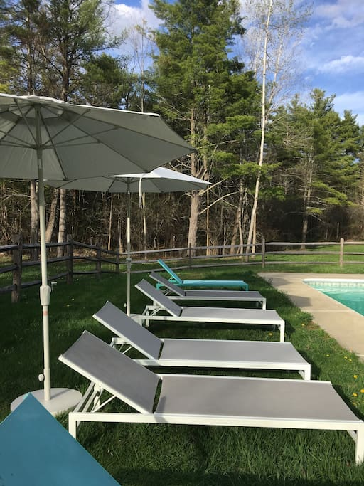 The pool looks out onto a field and the woods.  Full sun for maximum relaxation.