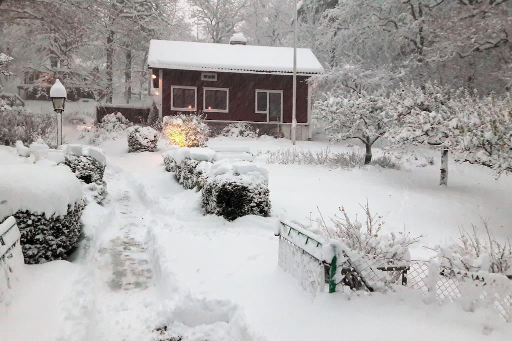 Snön skapar en fantastisk julstämning.