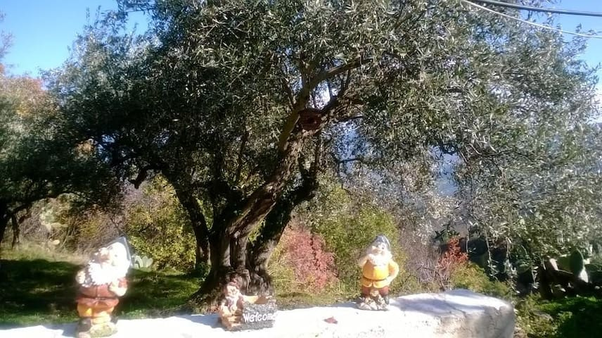 Casetta nel Parco delle Madonie - Castelbuono - Cabin