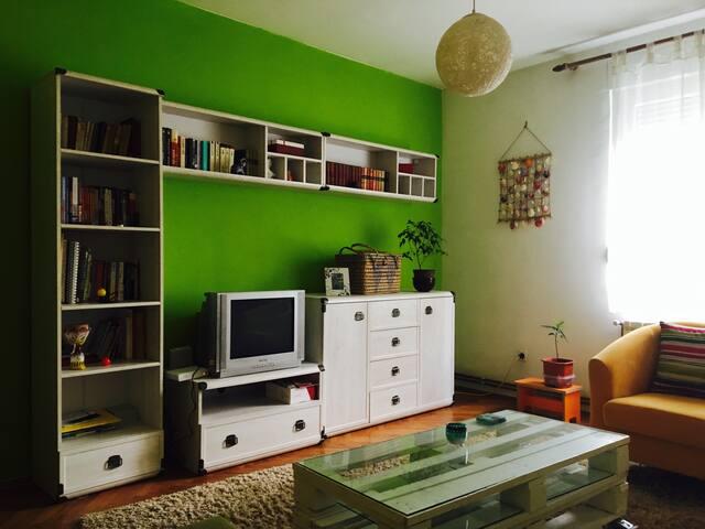Room with a spirit - Beograd - Appartamento