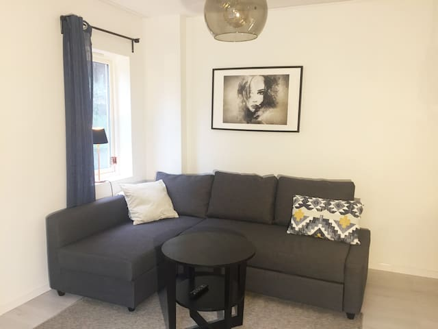 Newly renovated city centre flat, near the Harbor
