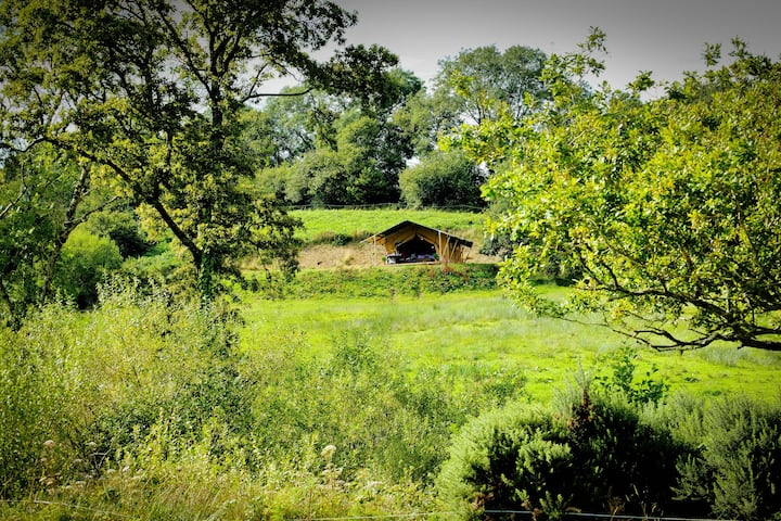 Oak Apple Lodge, stunning views on organic farm