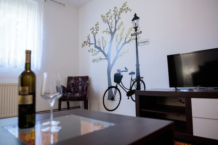 Apartment DUNAV*** Osijek, near the centre - Osijek - Daire