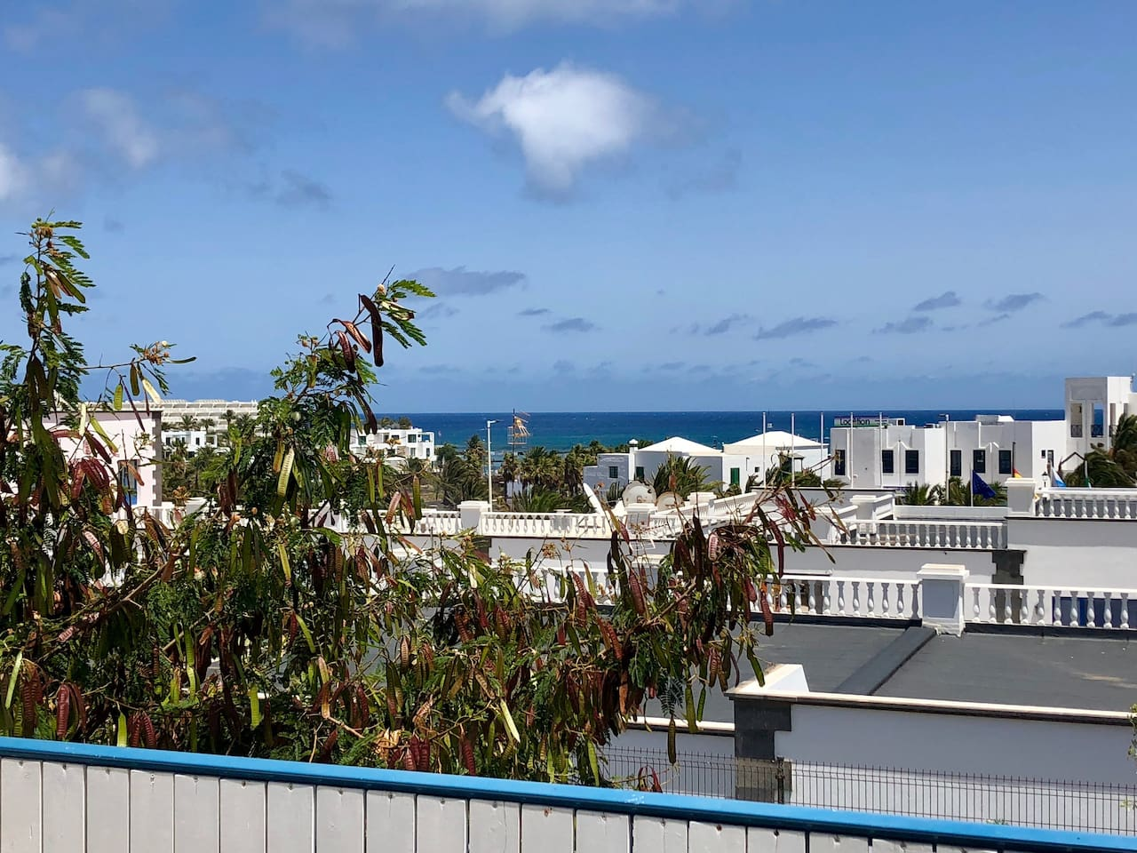 views from the terrace