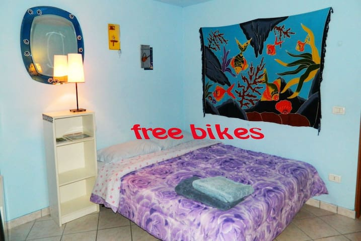 room1(5km to city center by bikes)