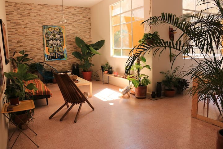 Patio House in Roma Norte - Ciudad de México - Appartement