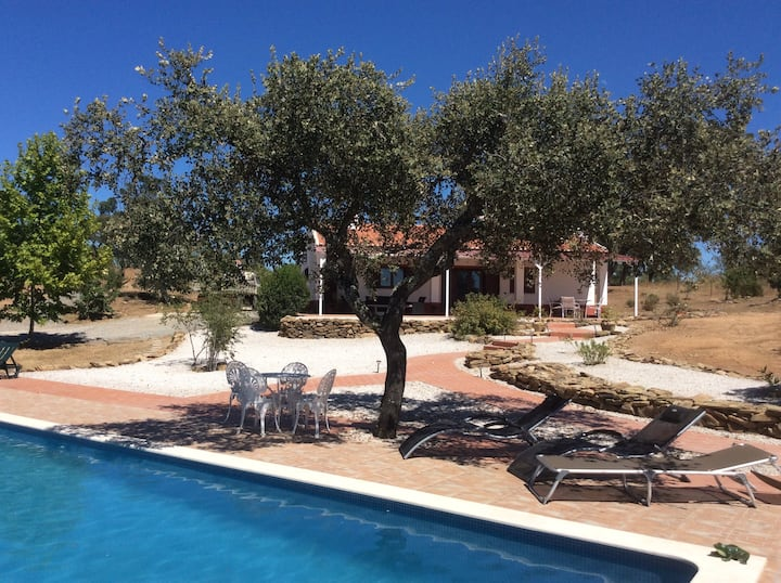Villa with luxury swimming pool  and hot tub