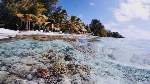 Privater Urlaub auf der Insel