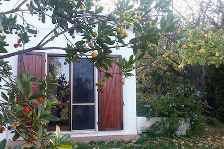 Casa Botanica nel Parco del Conero - Sirolo - House