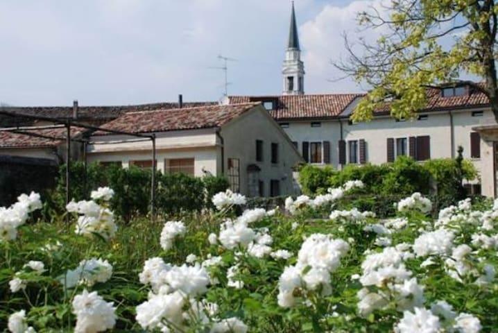 Resort Brandolini Rota - Cordignano - House