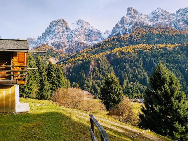 "The ""big"" Maso Raris Chalet & Dolomites Retreat"