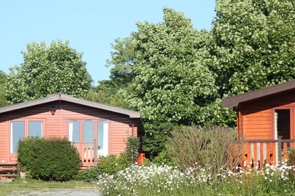 The cabins are set in mature grounds with  trees & fields surrounding them.