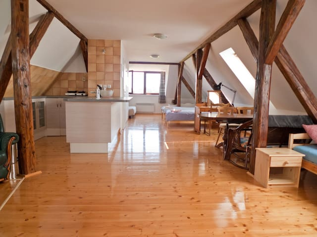 Spacious 60m² room in nice Lednice - Unesco Castle