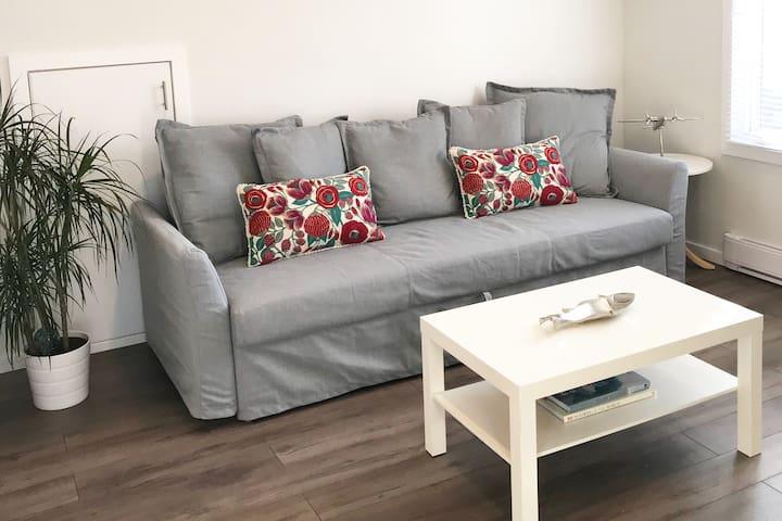 Living Room [w/Sofa-Bed] + Beautiful natural lighting.