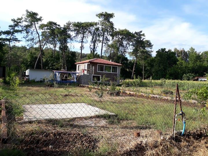 Cennet Koyda Tatil ( BIRD THE BED ) Konuk evi