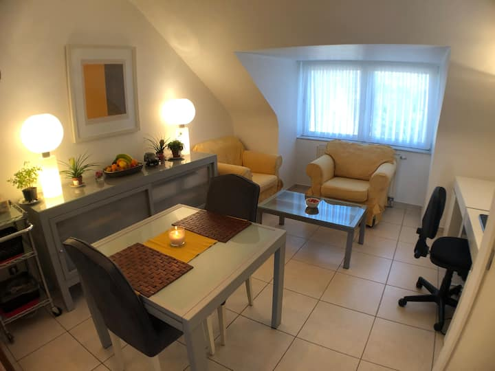 Business apartment near P&G and Brussels Expo
