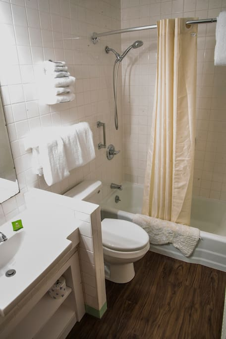 CLEAN Private bath with shower tub combo