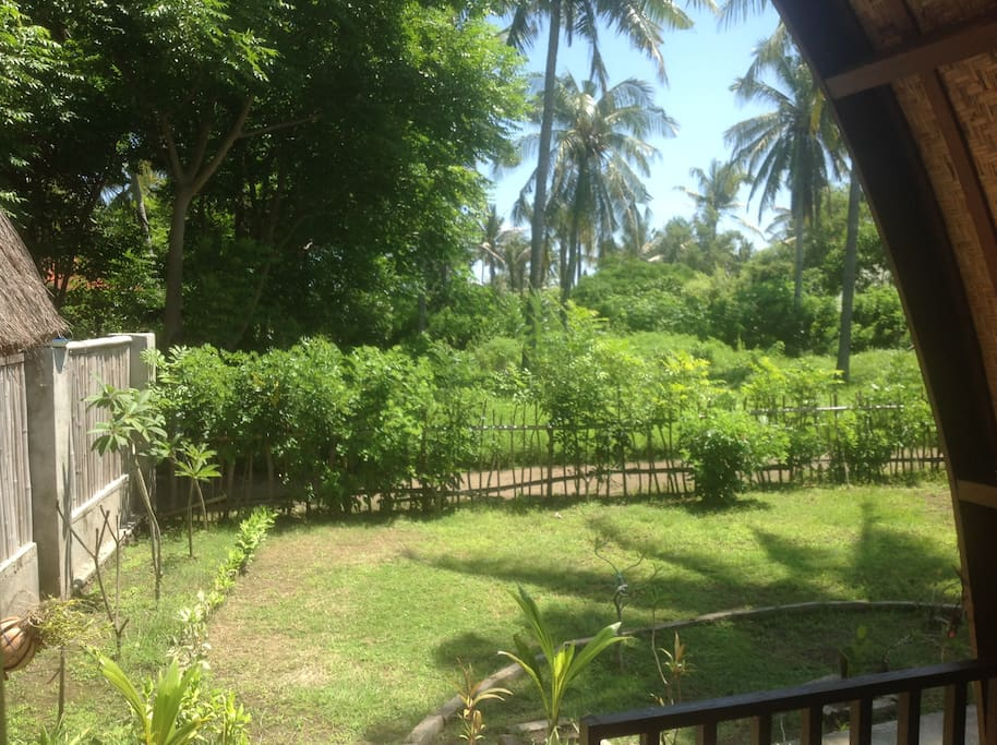 The view from the bungalow - PLEASE NOTE there is now a local shop (warung) on the neighbouring land