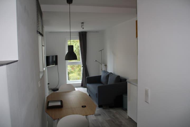 Schöne kleine Wohnung im Martinsviertel! - Darmstadt - Huoneisto