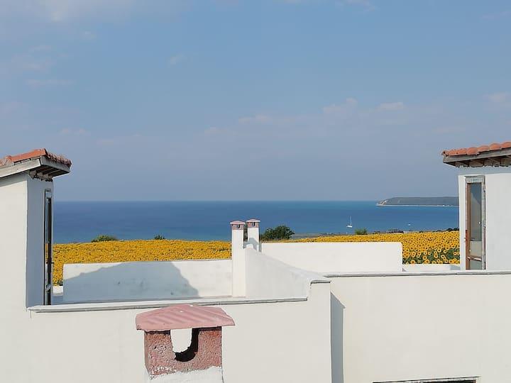 Erikli körfez deniz ve doğa manzaralı villa