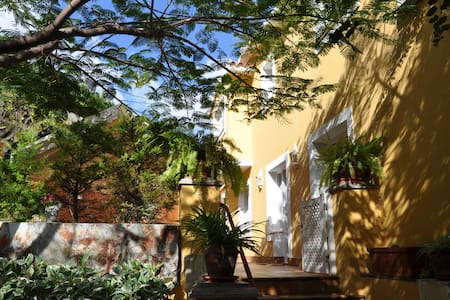 Leafy refuge with terrace - Las Palmas de Gran Canaria - Apartment