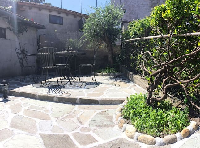 Newly renovated garden with BBQ