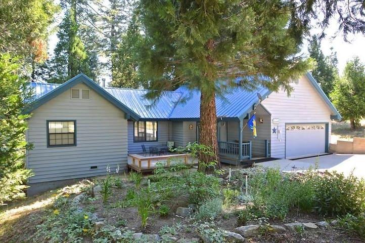 Jaenicke Cabin - Shaver Lake - Apartment
