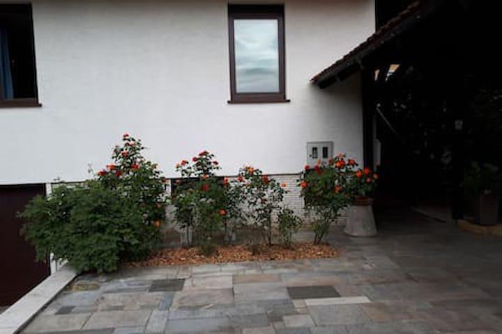 Comfortable house near Ljubljana.